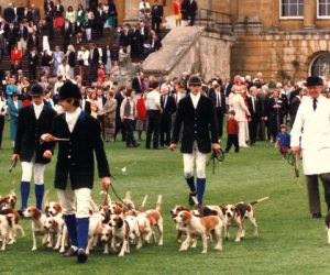 Stowe Beagles in the 1980s