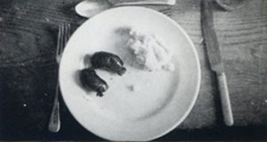 Colin Davies Meal