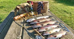 The catch from the Test Side lakes in Hampshire